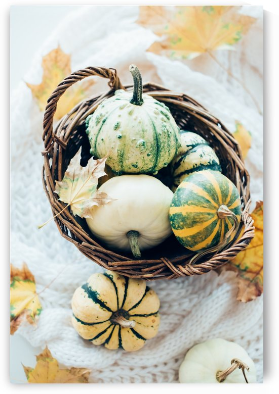 Autumn pumpkins in a basket by Daria Minaeva