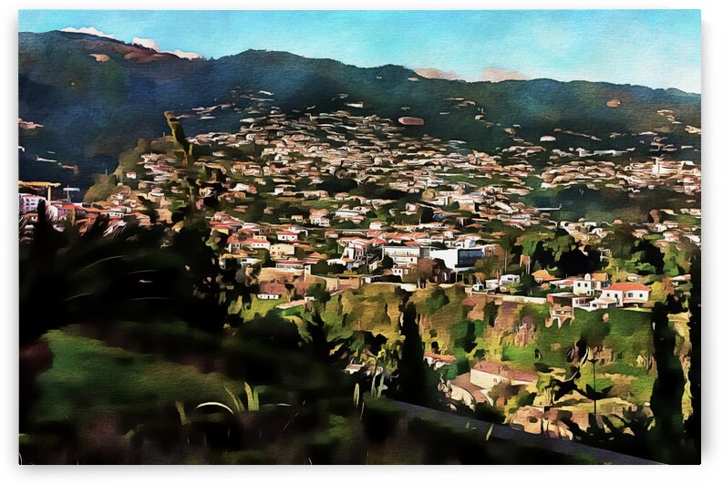 Funchal View Madeira 4 by Dorothy Berry-Lound