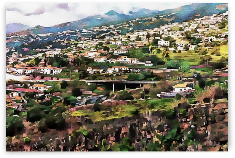 Funchal View Madeira 6 by Dorothy Berry-Lound