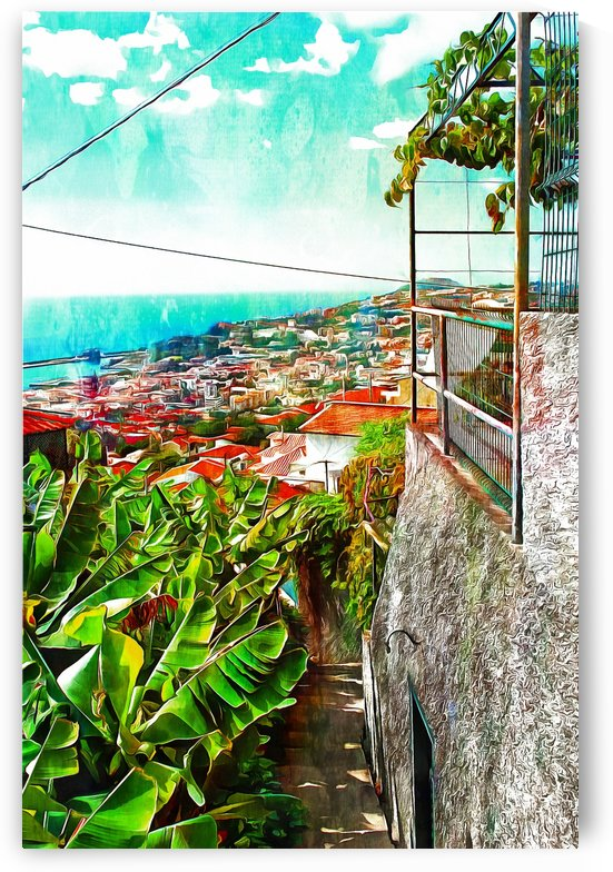 View Down to Funchal From Monte by Dorothy Berry-Lound