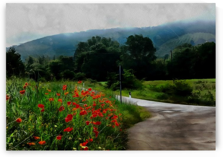 The Poppy Road to Happiness by Dorothy Berry-Lound