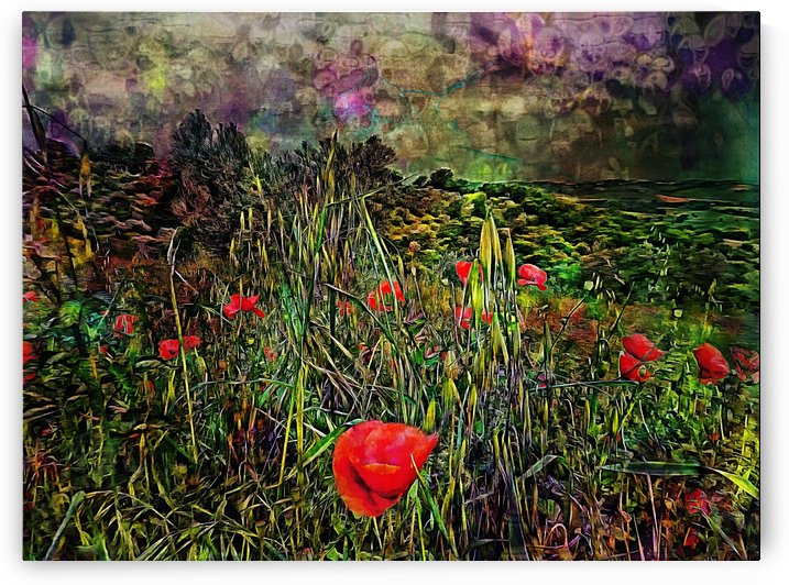 Bubbling Storm with Poppies by Dorothy Berry-Lound