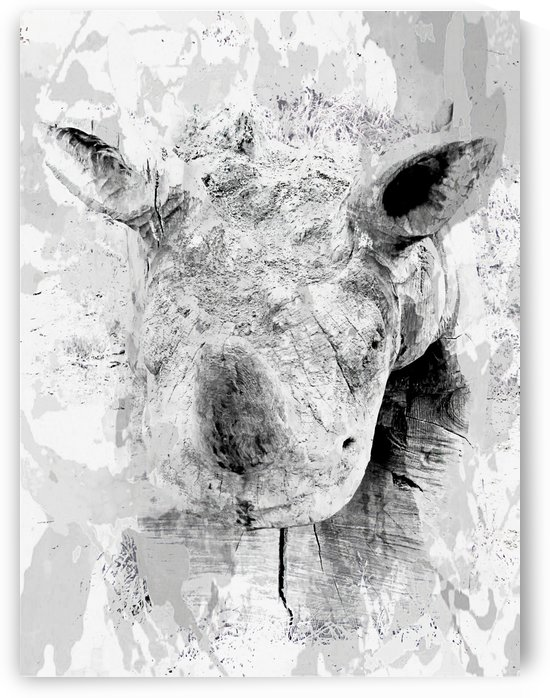 Ghost of a Rhinocerus by Dorothy Berry-Lound