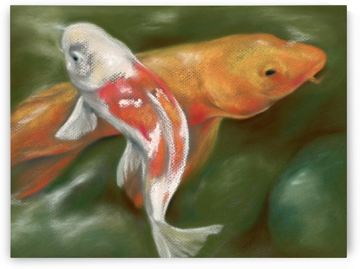Orange and White Koi with Mossy Stones by MM Anderson