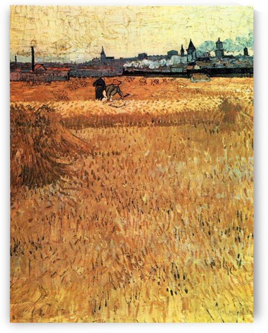 Wheat field with a view of Arles by Van Gogh by Van Gogh