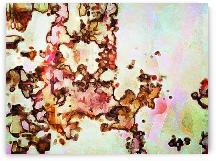 Wandering Abstraction by Dorothy Berry-Lound
