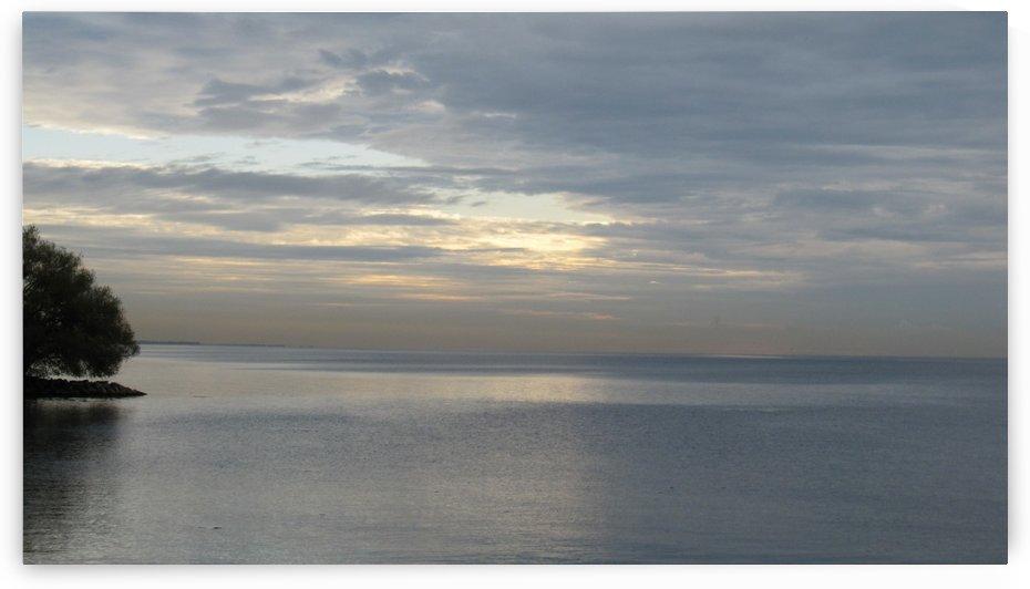 Ocean (106) by Ngan Hong Truong
