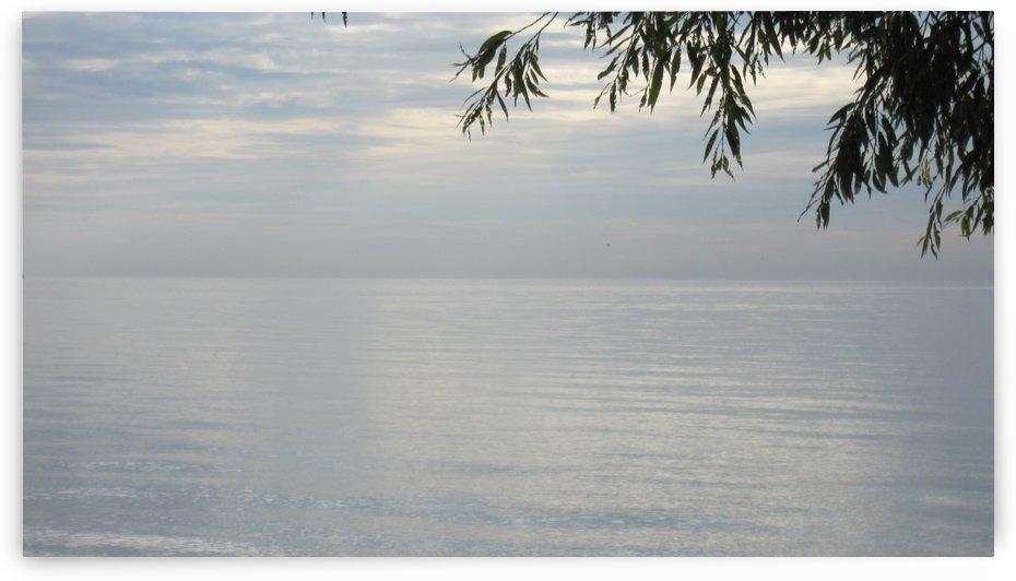Ocean (95) by NganHongTruong