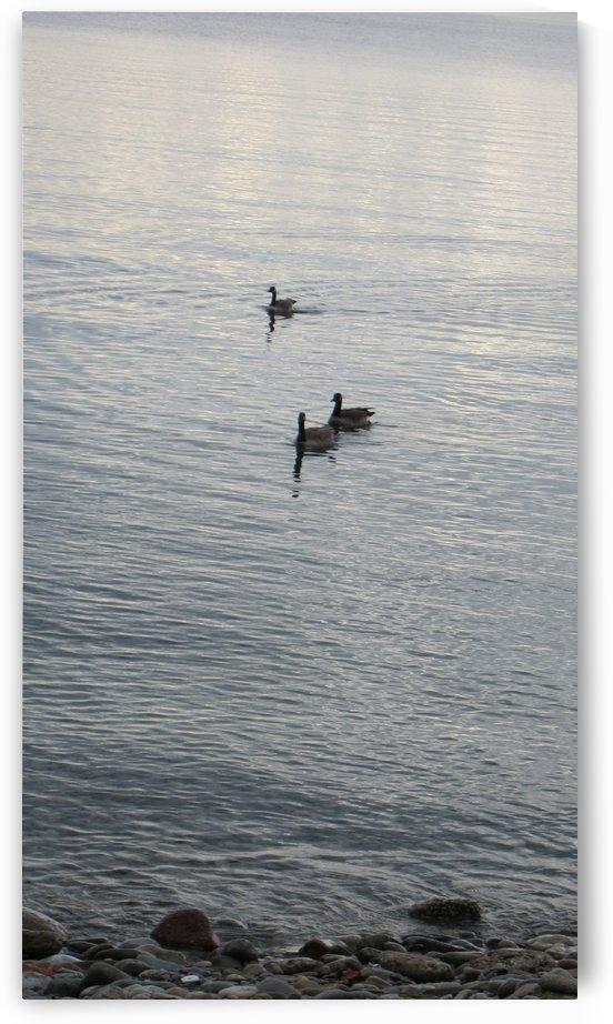 Ocean (105) by Ngan Hong Truong
