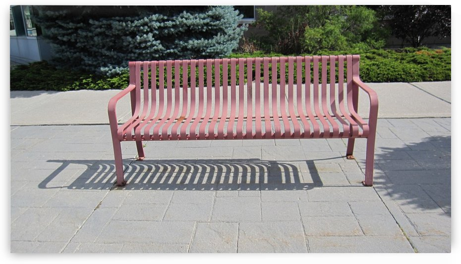 Bench (37) by Ngan Hong Truong
