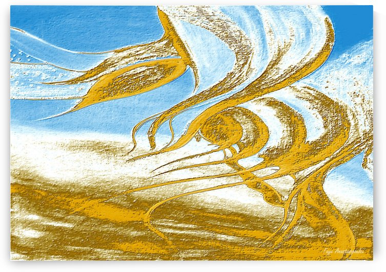 Wind Melodies by Fotini Anastasopoulou