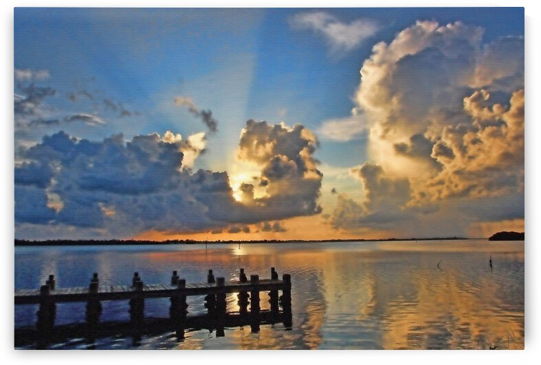 A Ray Of Sunshine by HH Photography of Florida