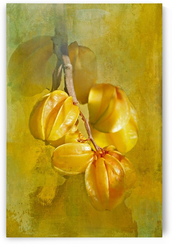 Star Fruit by HH Photography of Florida