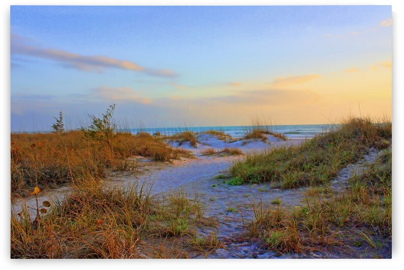 Down To The Shore by HH Photography of Florida
