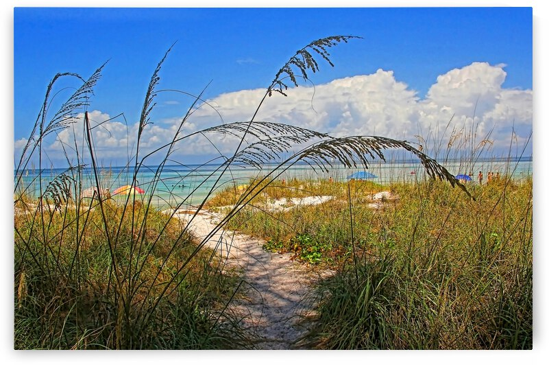 A Day At The Beach by HH Photography of Florida