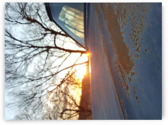 Sun 17 by April D  Metzler