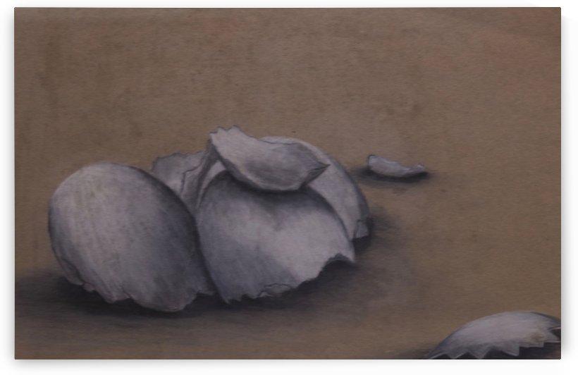 Egg shells by Larry Schultz