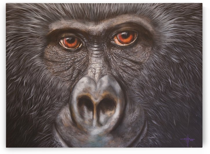 Gorilla by Larry Schultz