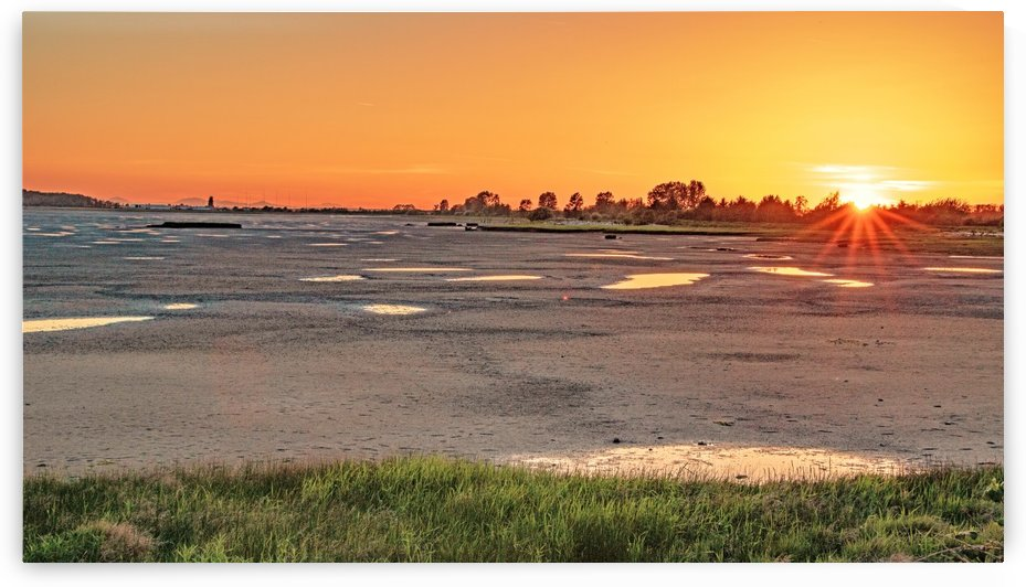 Mudflats Sunset by Michael Snell