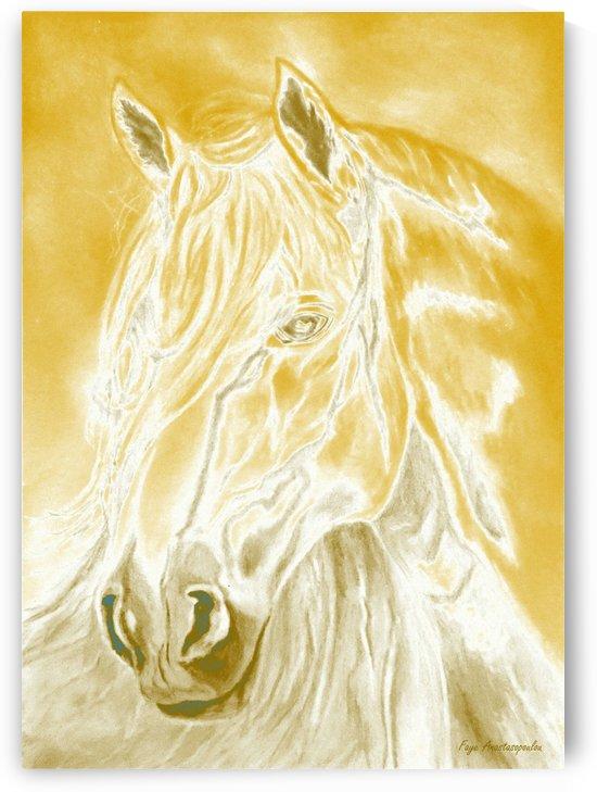 Sunshine Horse by Fotini Anastasopoulou