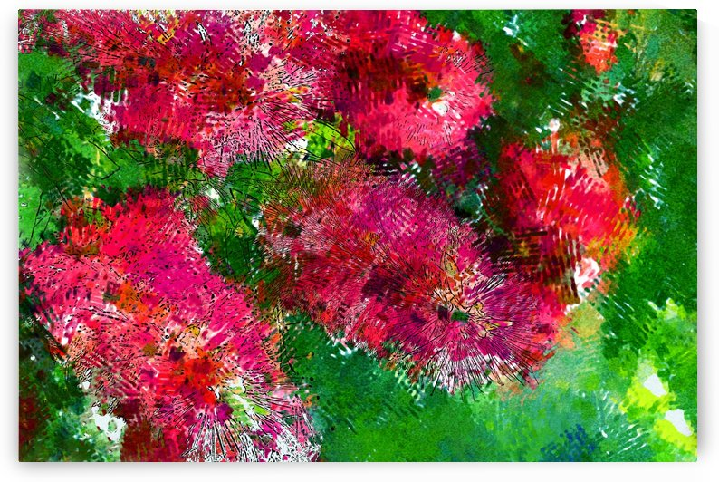 Bottle Brush Abstract 2 by HH Photography of Florida
