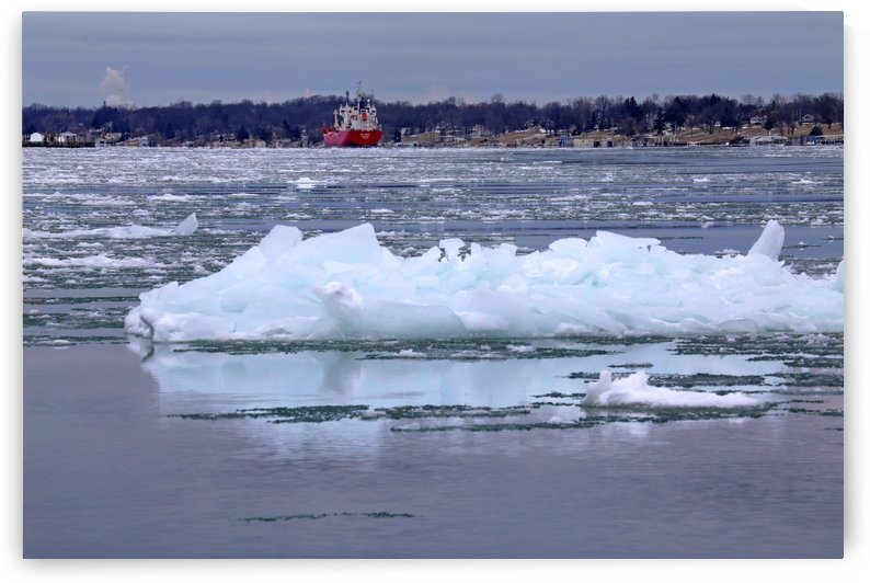 Ice on the River with Freighter 021619 by Mary Bedy