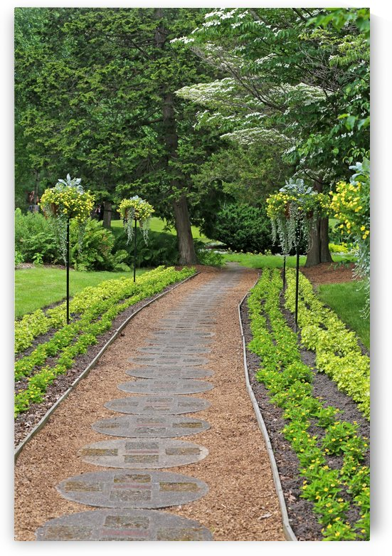 Dow Gardens Path 1 2018 by Mary Bedy