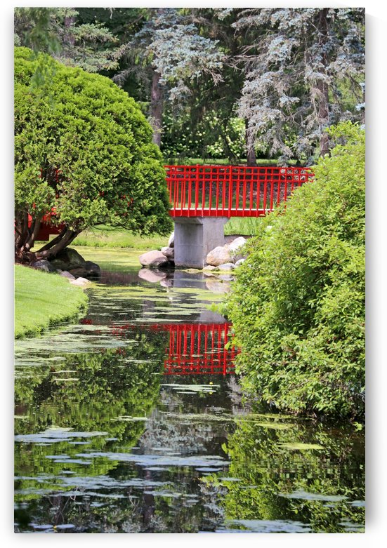 Red Bridge and Reflection 2 Dow Gardens 062618 by Mary Bedy