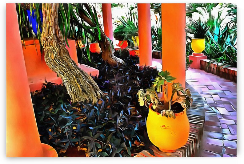 Colorful Plant Pots Marrakech 5 by Dorothy Berry-Lound
