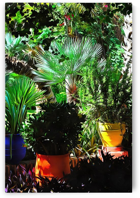 Colorful Plant Pots Marrakech 6 by Dorothy Berry-Lound