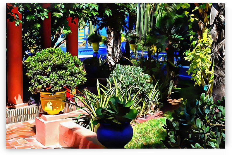 Colorful Plant Pots Marrakech 7 by Dorothy Berry-Lound