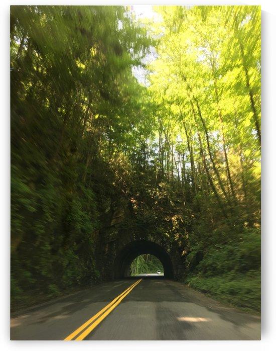 Wooded Bridge by karenlynn