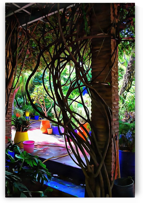 Colorful Plant Pots Marrakech 3 by Dorothy Berry-Lound