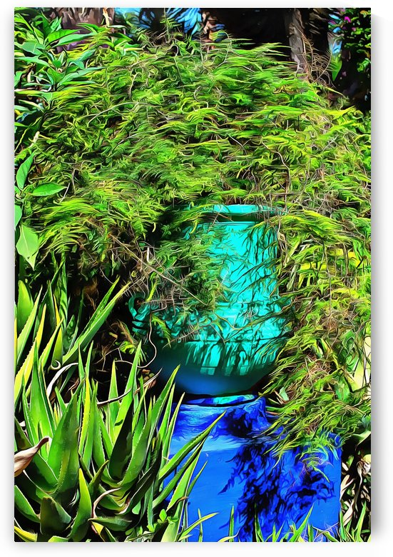 Colorful Plant Pots Marrakech 4 by Dorothy Berry-Lound