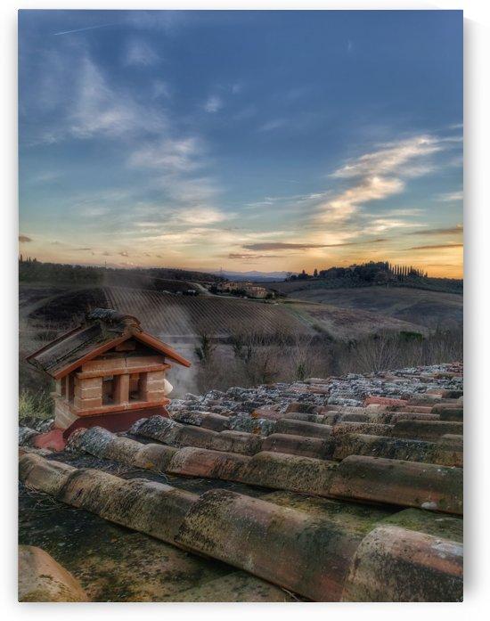 Tuscany Olive Farm by Wilken Photos