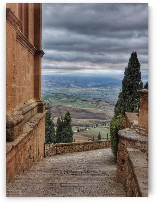 Montalcino by Wilken Photos