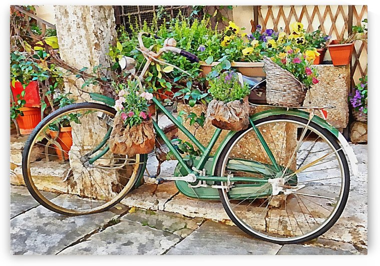 Decorative Bicycle In Cortona by Dorothy Berry-Lound