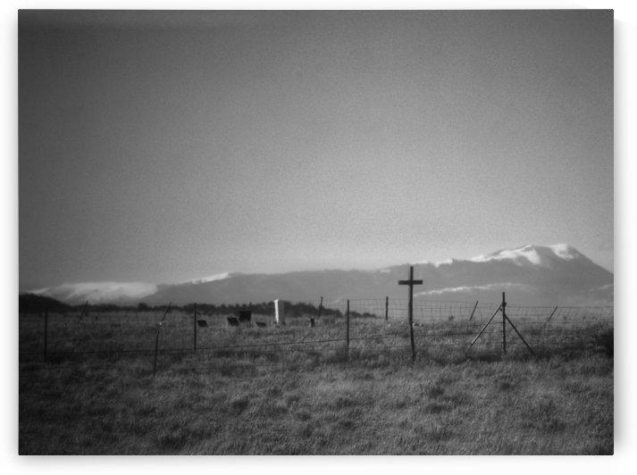 Colorado BnW by Wilken Photos