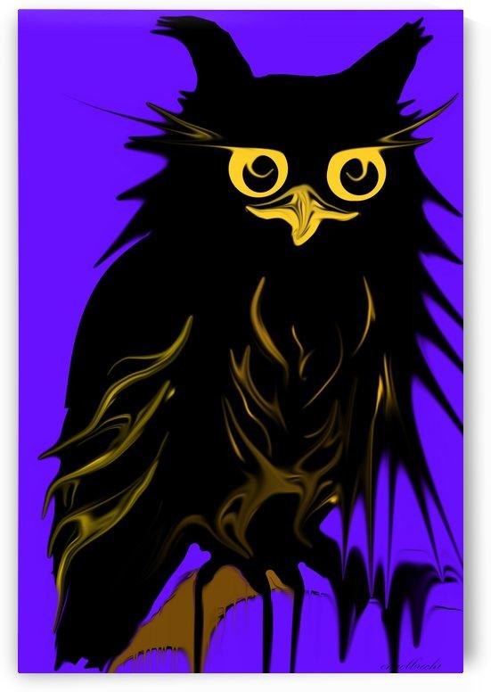 owl by irma engelbrecht