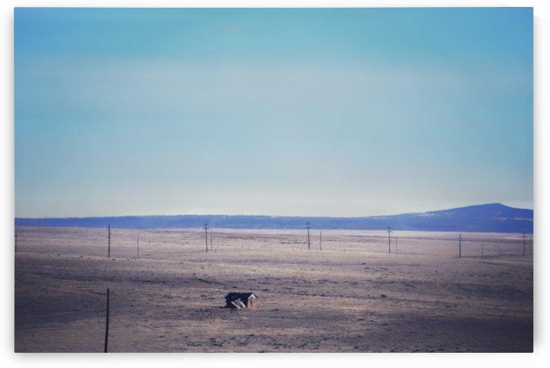 Prairie Shack by Wilken Photos