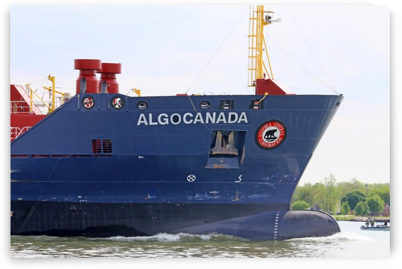 Algocanada Detail with Fishing Boat 052619 by Mary Bedy