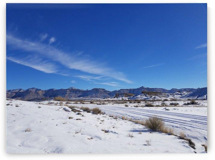 Snow Tracks In Wintry Utah by Cam