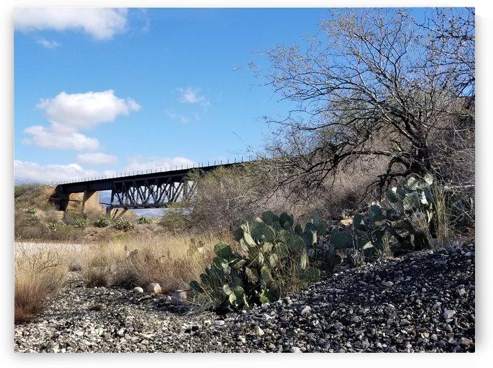 Train Bridge Through Desert by Cam