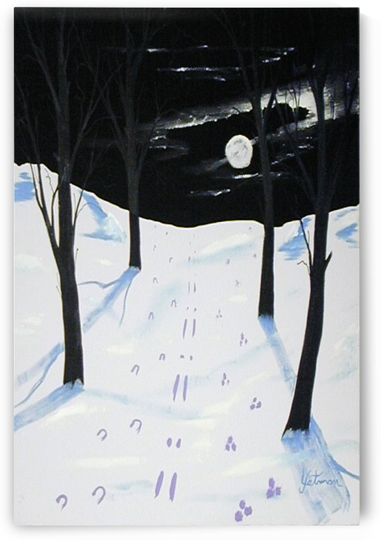 Nightime Snow Tracks by FoxHollowArt