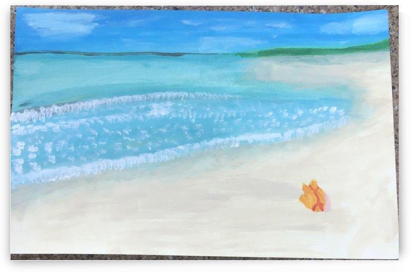 Beach Landscape  by Ryan Goodreds