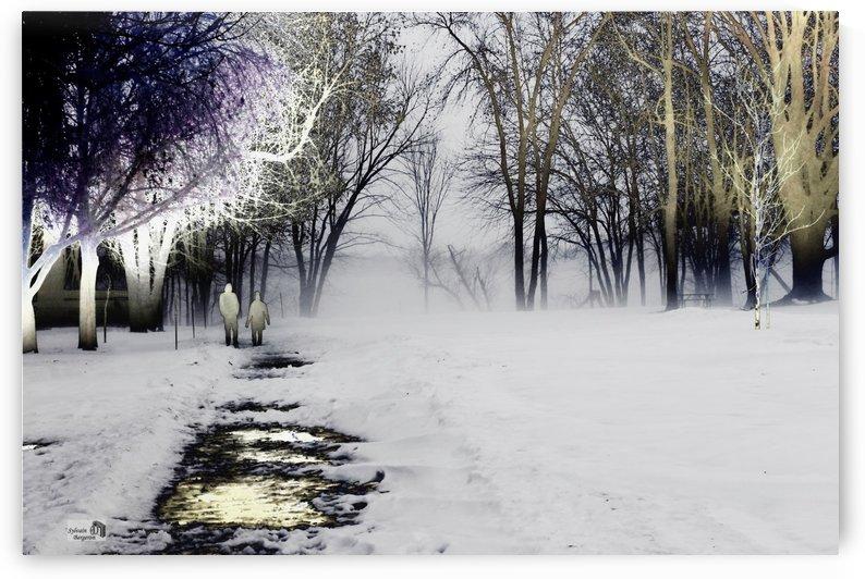 Rencontre brumeuse by Sylvain Bergeron Photographies