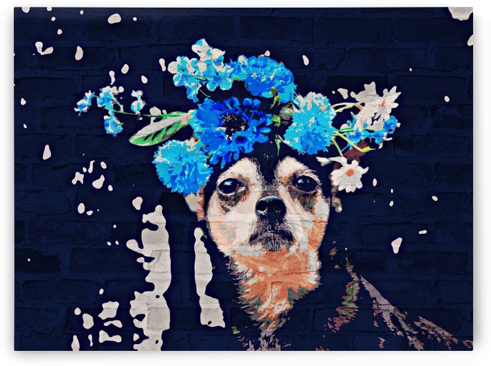 Chihuahua Flower Crown by Mercy Ann Grace
