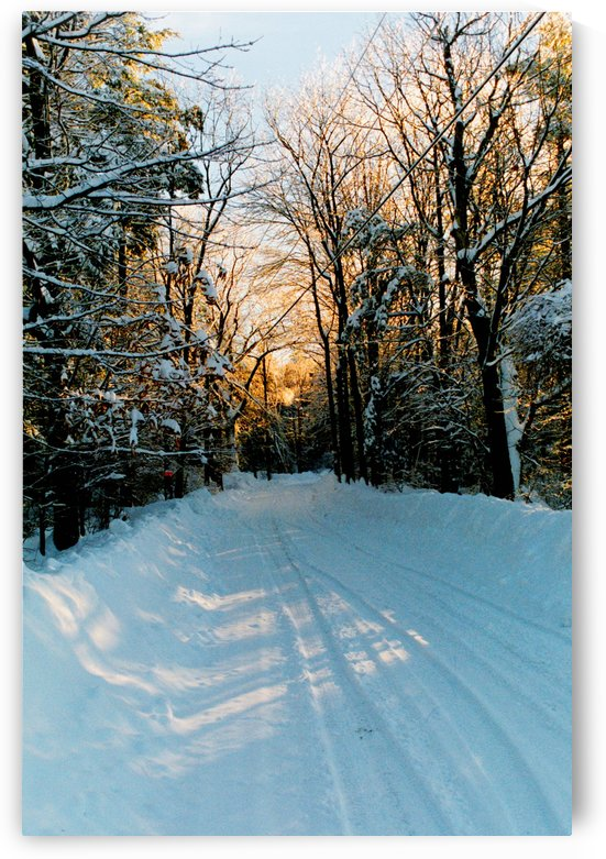 Winter Roads - Temple New Hampshire by FoxHollowArt