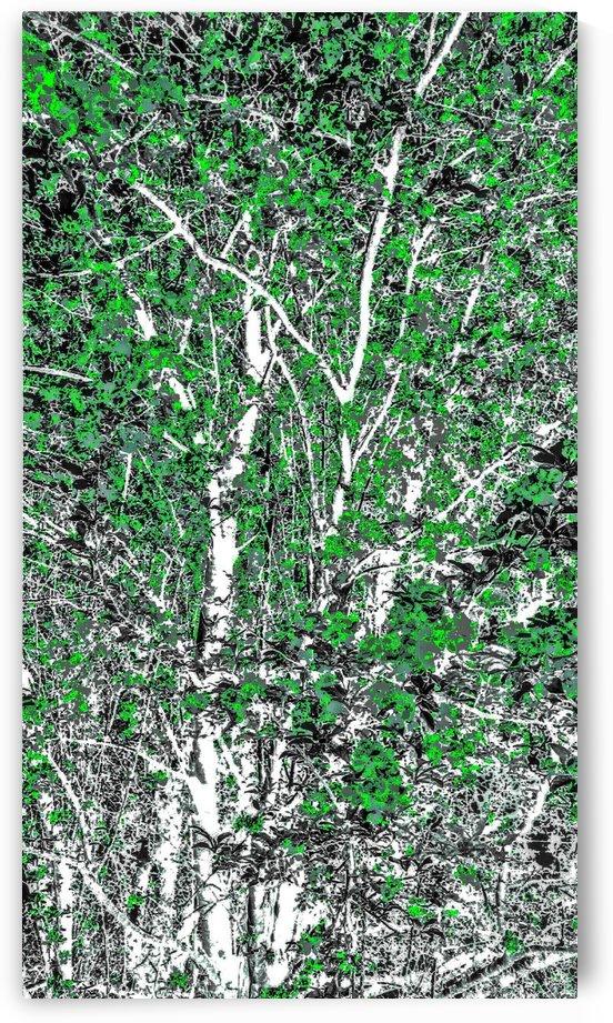Tree Branchs of Green Art  by Jeremy Lyman