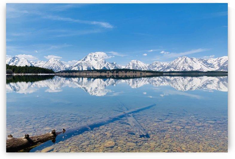 Reflections at Lake Jackson Grnad Teton National Park  by Nagesh J
